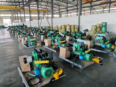 Wire Rope Electric Hoist for Sale